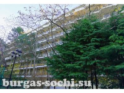 Пансионат «Бургас», фото территории, общий вид